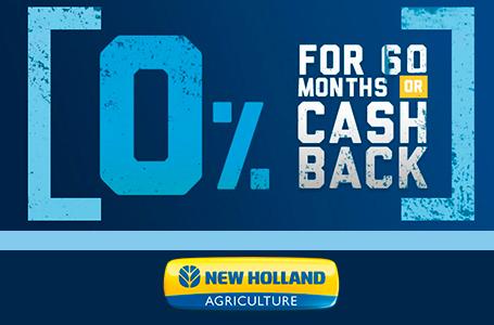 0% for 60 OR Cash Back
